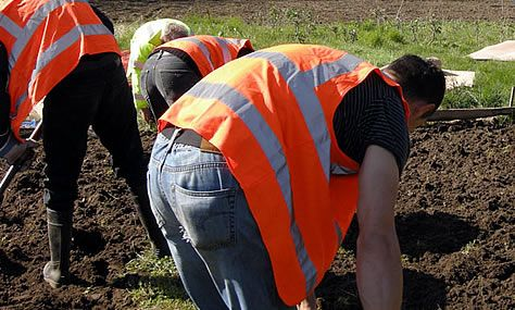 Community Payback helps animal charity